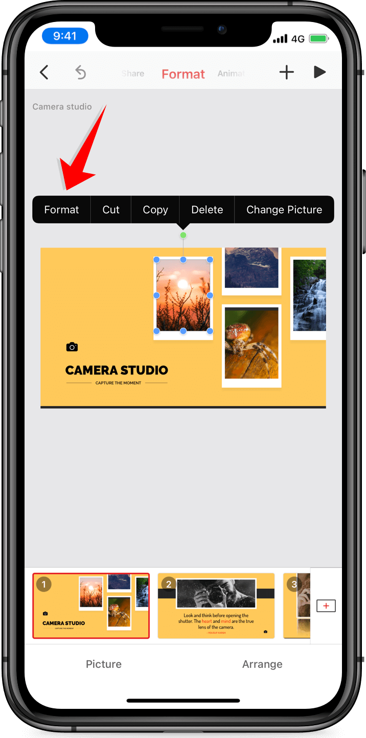 Format a picture