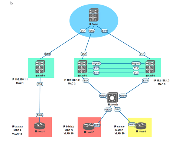 VXLAN LAB on EVE-NG Platform