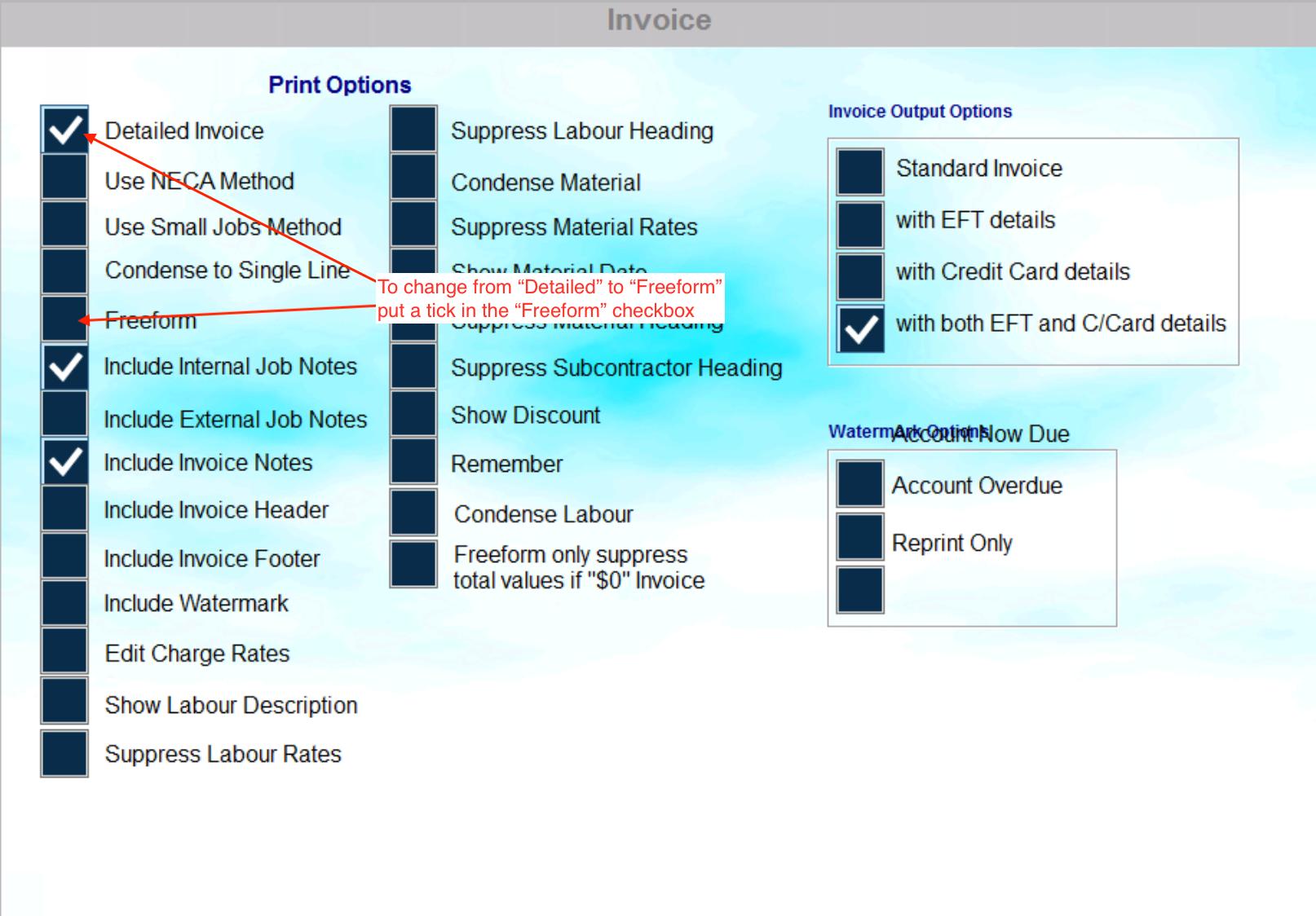 Invoice Options
