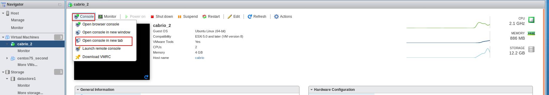 Hystax VMware Replication Agent VM console